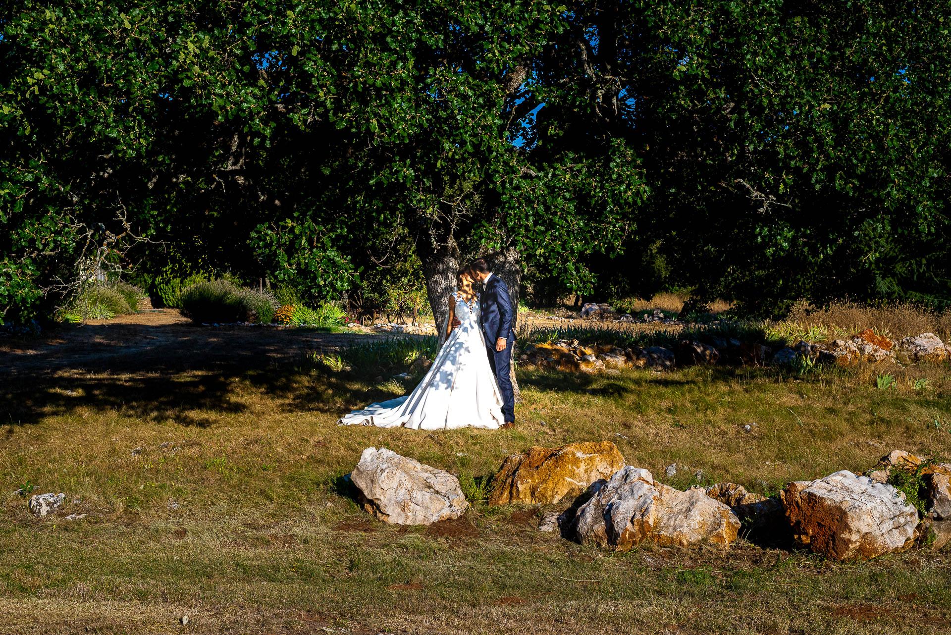 Les mariés sous le splendide chêne du domaine du planet en Provence